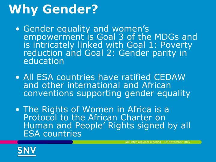 Why Gender?