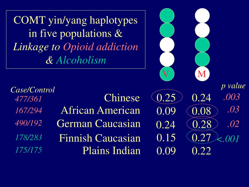 COMT yin/yang haplotypes in five populations &
