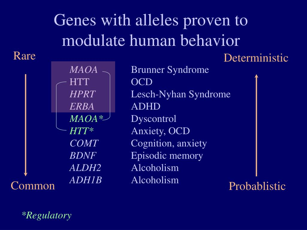 Genes with alleles proven to modulate human behavior