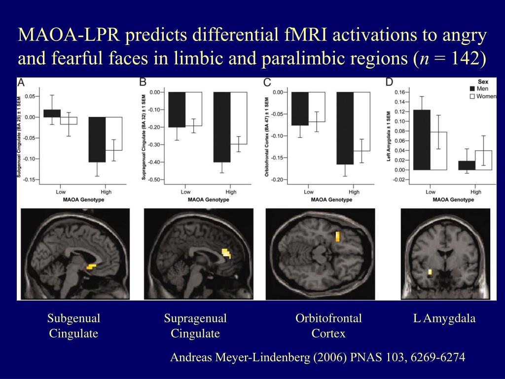 MAOA-LPR predicts differential fMRI activations to angry and fearful faces in limbic and paralimbic regions (