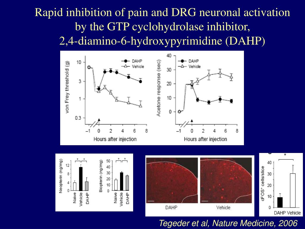 Rapid inhibition of pain and DRG neuronal activation