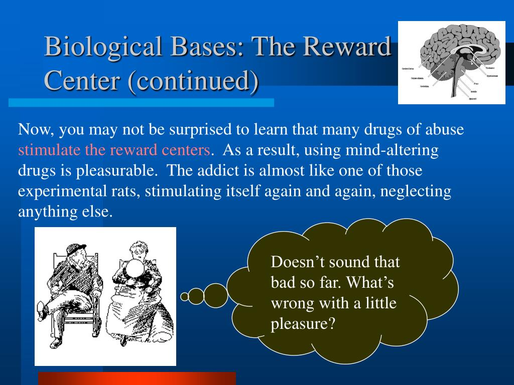Biological Bases: The Reward Center (continued)