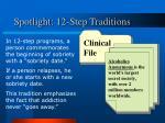 spotlight 12 step traditions