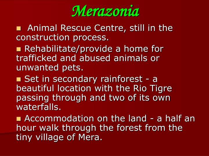 Merazonia