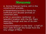 merazonia1