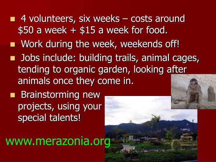 4 volunteers, six weeks – costs around $50 a week + $15 a week for food.
