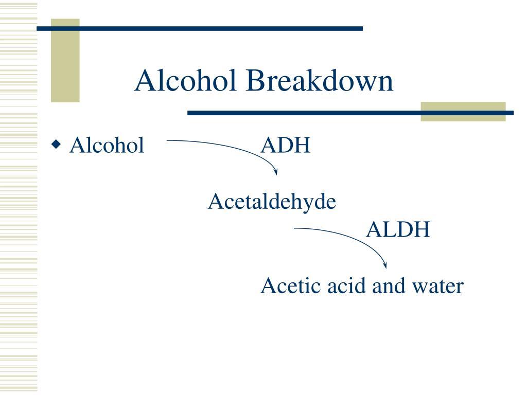 Alcohol Breakdown