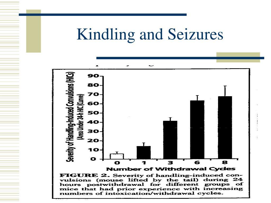 Kindling and Seizures