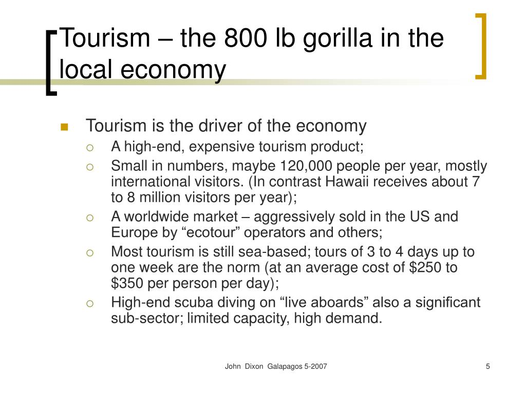 Tourism – the 800 lb gorilla in the local economy