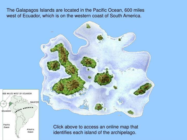 The Galapagos Islands are located in the Pacific Ocean, 600 miles west of Ecuador, which is on the w...