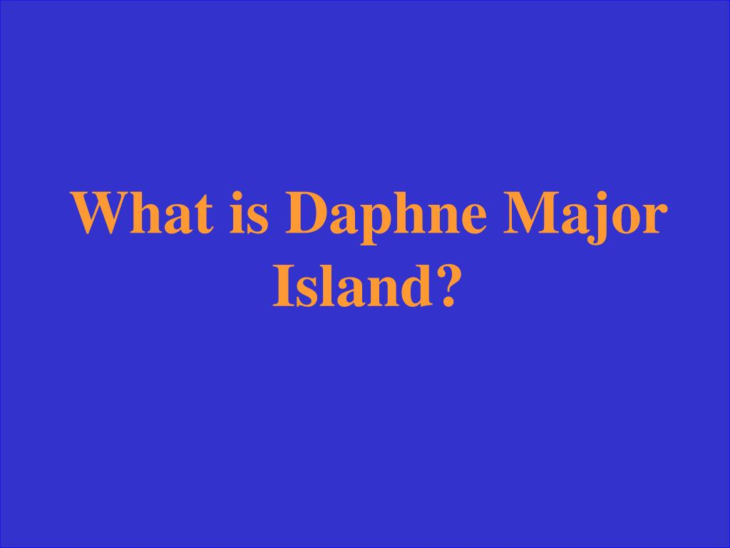 What is Daphne Major Island?