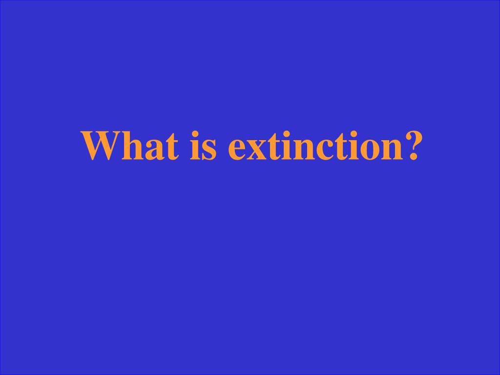 What is extinction?