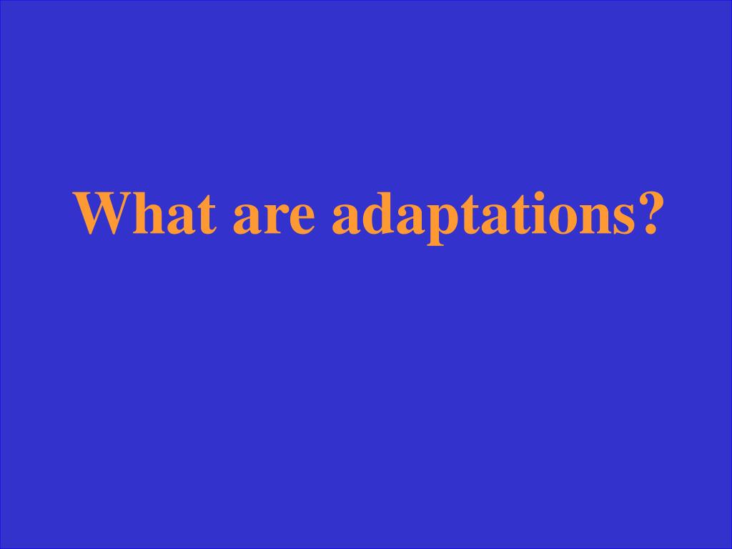What are adaptations?
