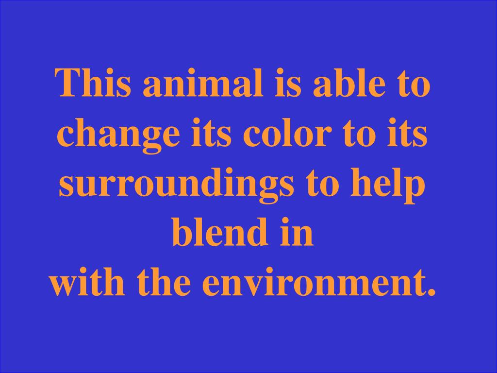 This animal is able to change its color to its surroundings to help blend in