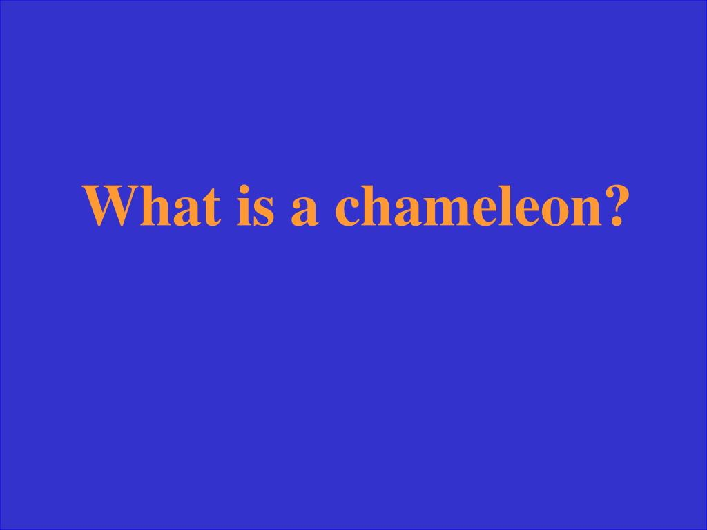What is a chameleon?