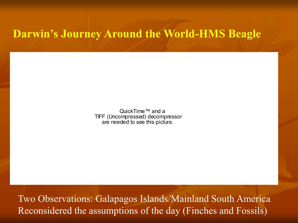 Darwin's Journey Around the World-HMS Beagle