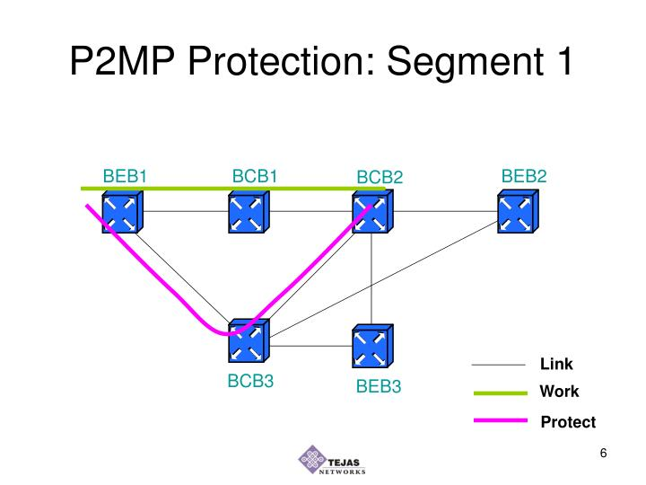 P2MP Protection: Segment 1