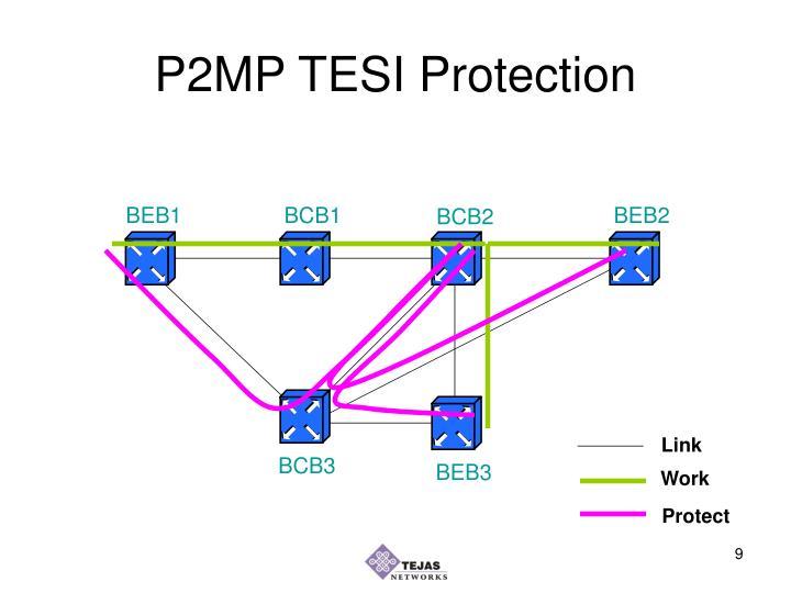 P2MP TESI Protection