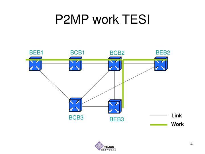 P2MP work TESI