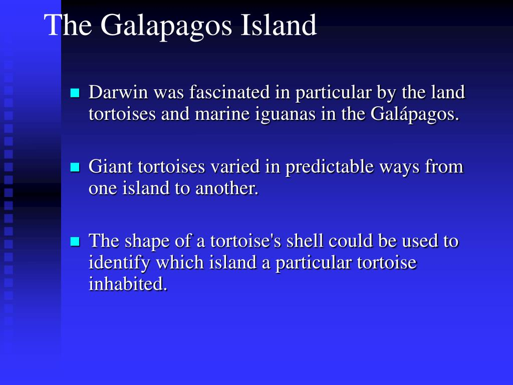 Darwin was fascinated in particular by the land tortoises and marine iguanas in the Galápagos.