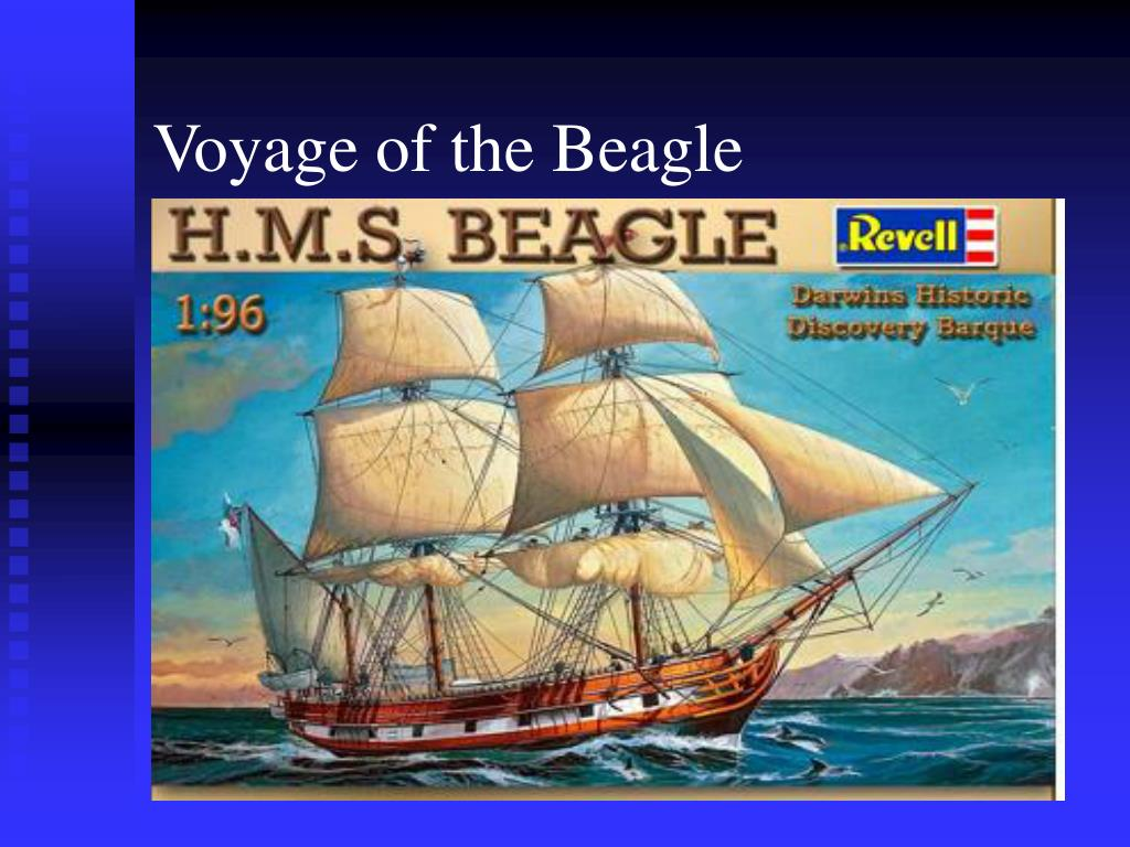 Voyage of the Beagle