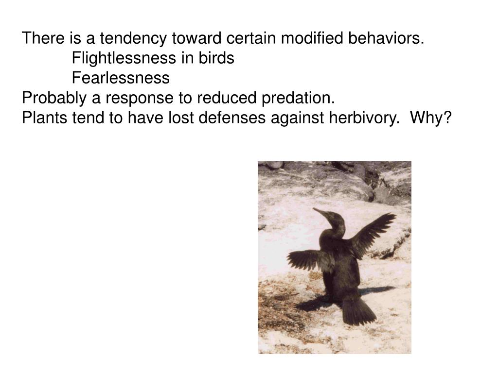 There is a tendency toward certain modified behaviors.