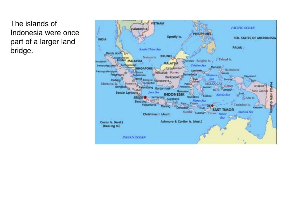 The islands of Indonesia were once part of a larger land bridge.