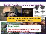 darwin found many unique species