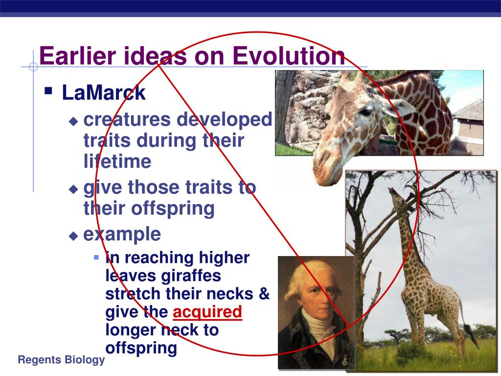 Earlier ideas on Evolution