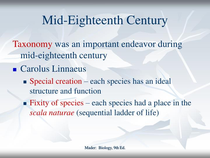 Mid eighteenth century