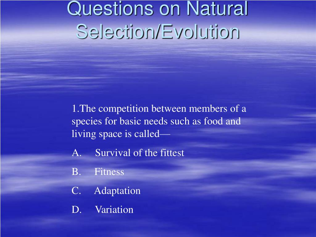Questions on Natural Selection/Evolution