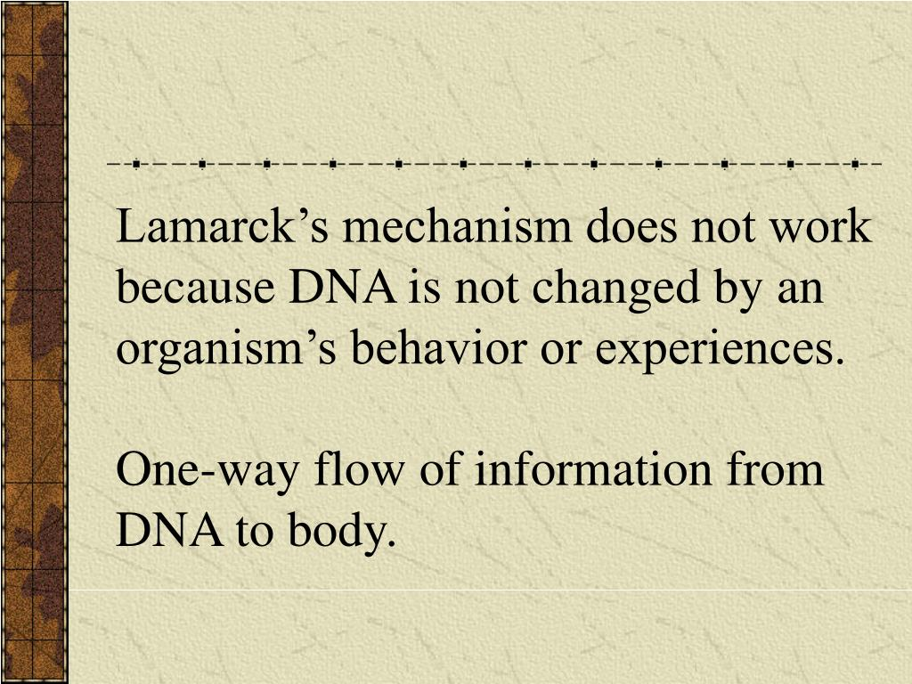 Lamarck's mechanism does not work