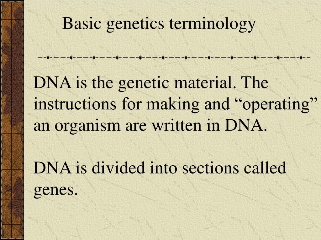 Basic genetics terminology