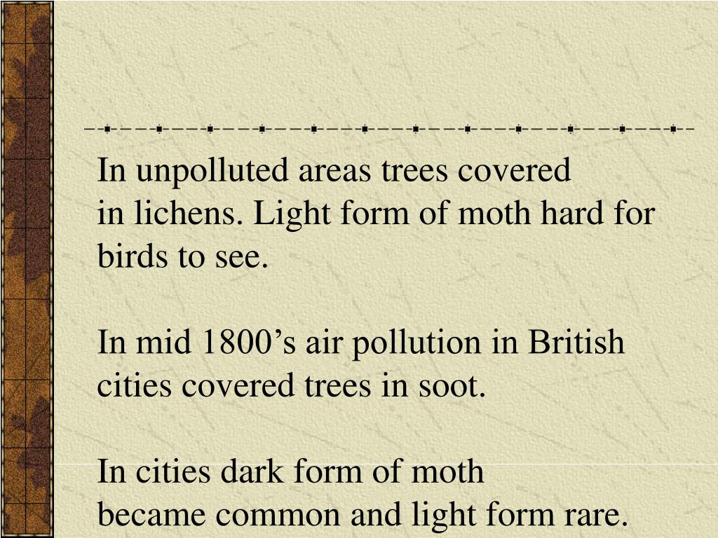 In unpolluted areas trees covered