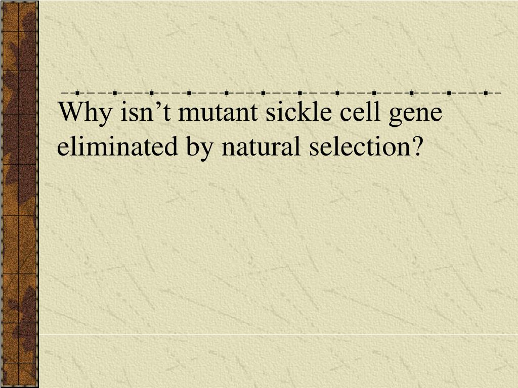Why isn't mutant sickle cell gene