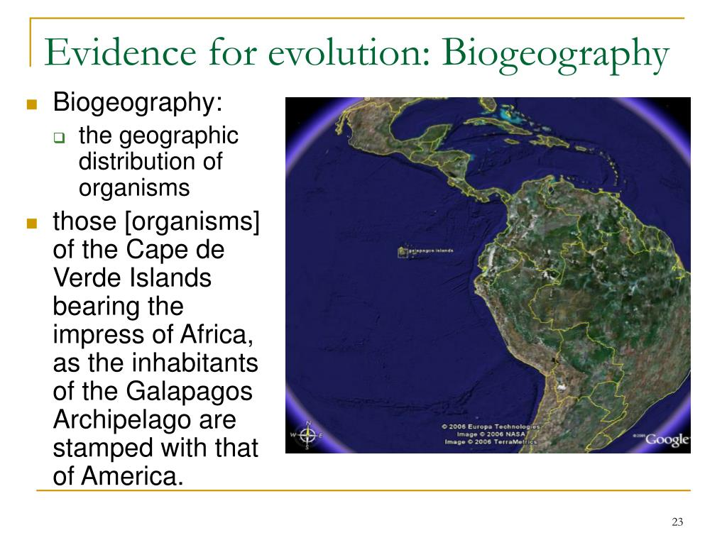 Evidence for evolution: Biogeography