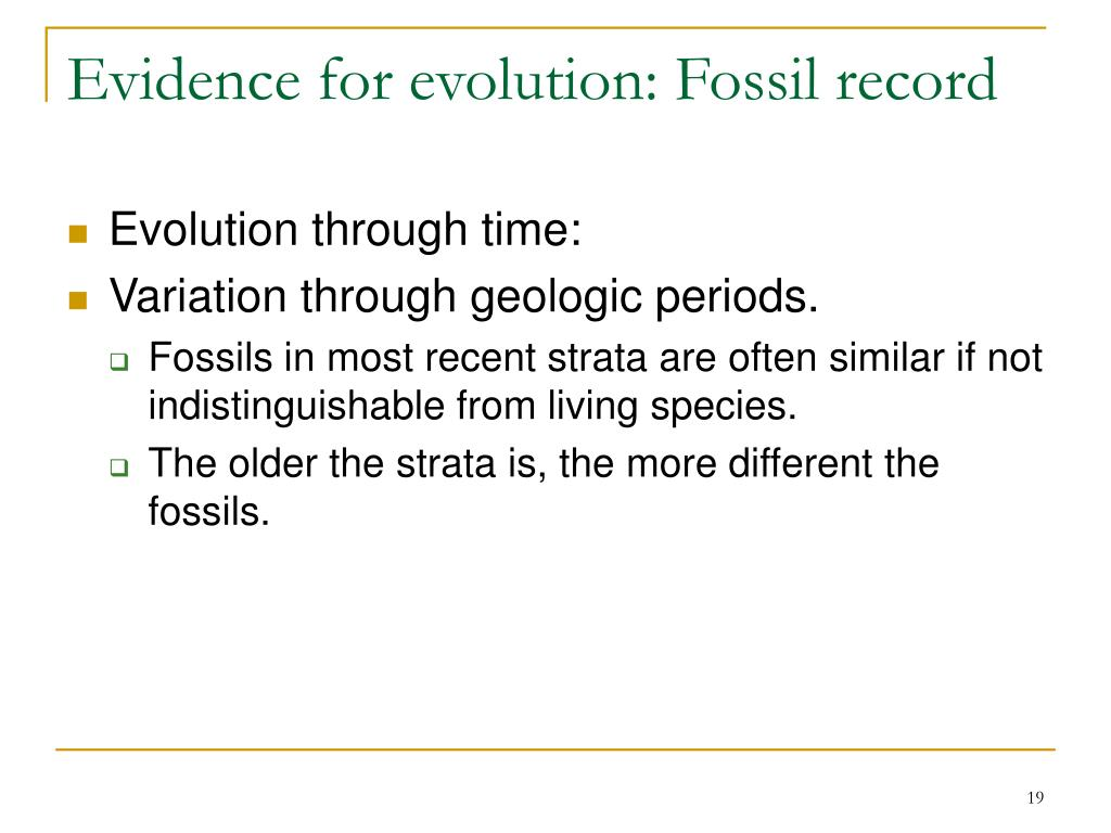 Evidence for evolution: Fossil record