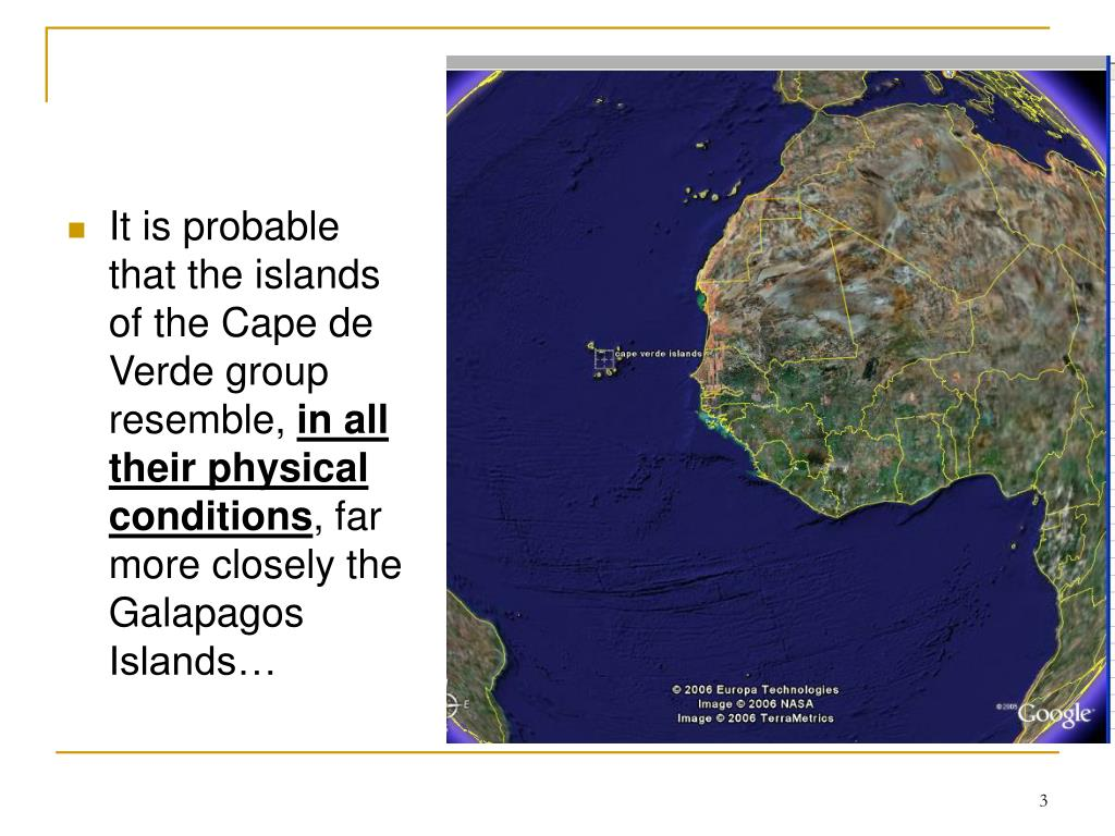 It is probable that the islands of the Cape de Verde group resemble,