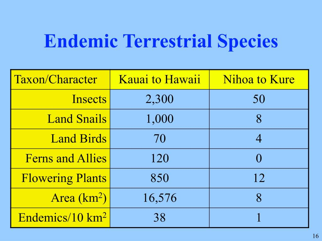 Endemic Terrestrial Species