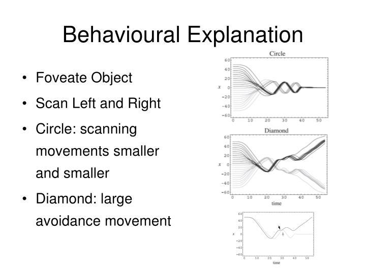 Behavioural Explanation