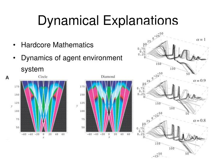 Dynamical Explanations