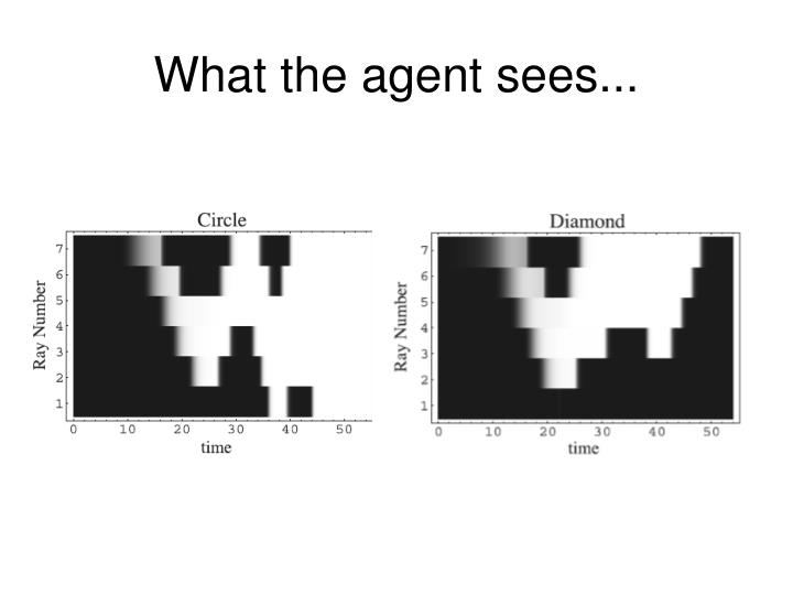 What the agent sees...
