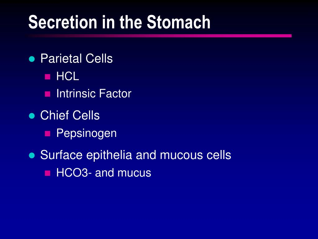 Secretion in the Stomach