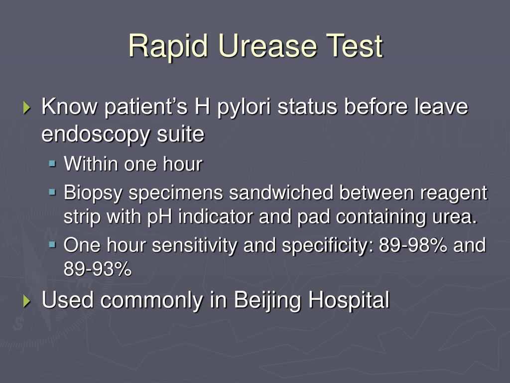 Rapid Urease Test