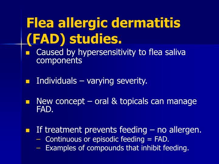 Flea allergic dermatitis (FAD) studies.