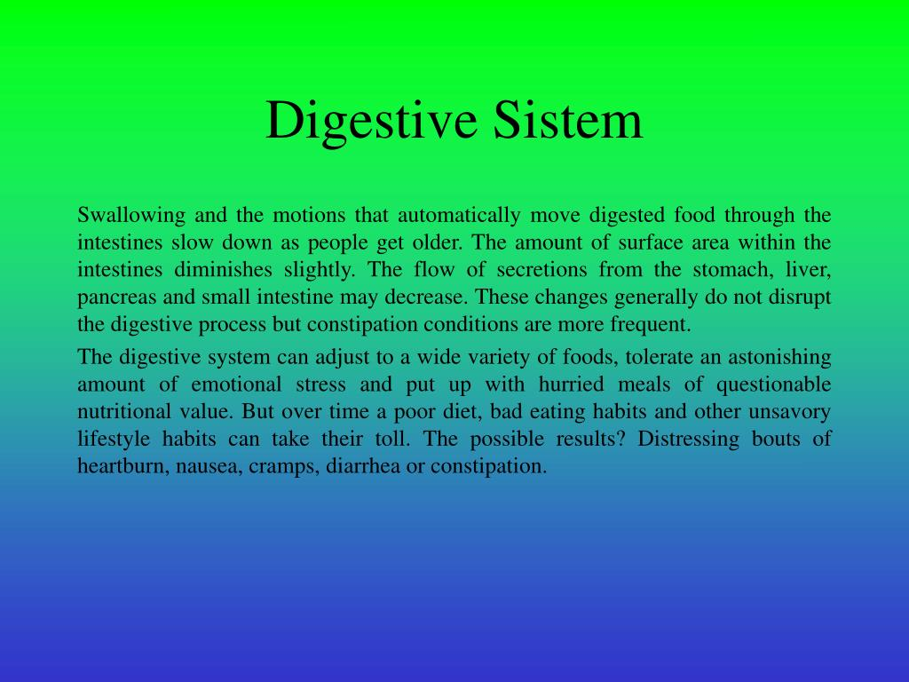 Digestive Sistem