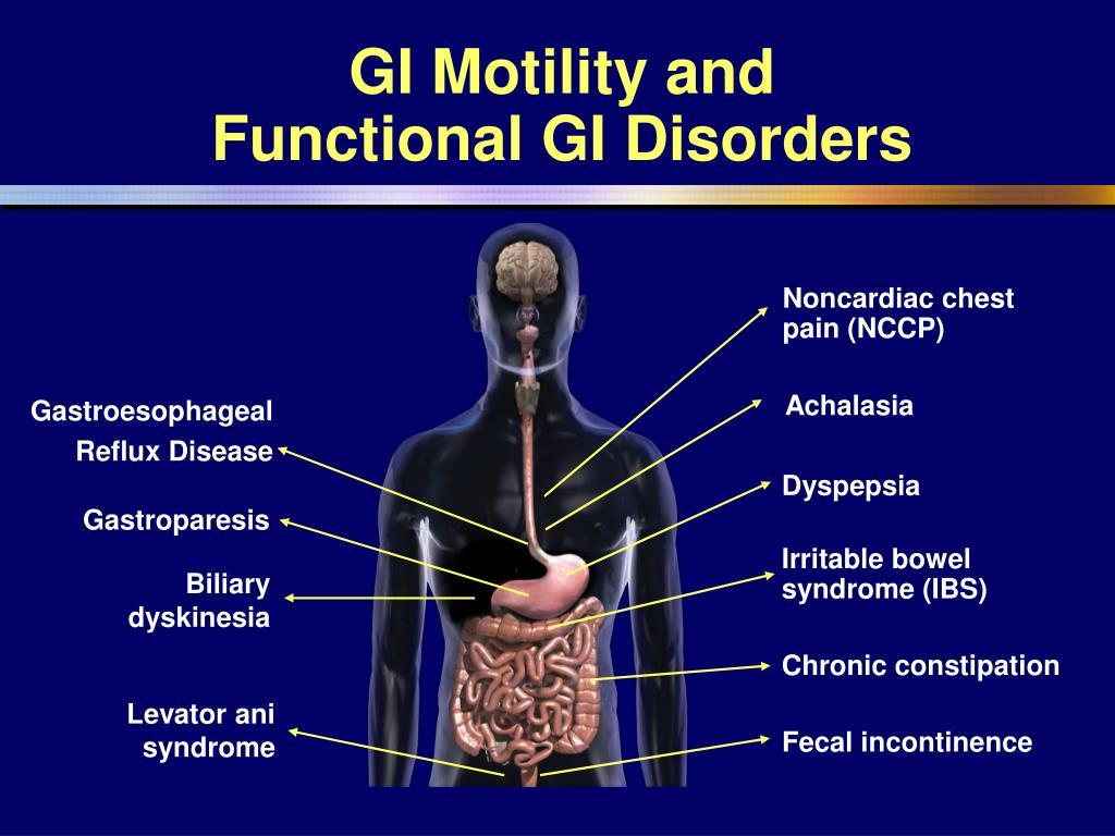 GI Motility and