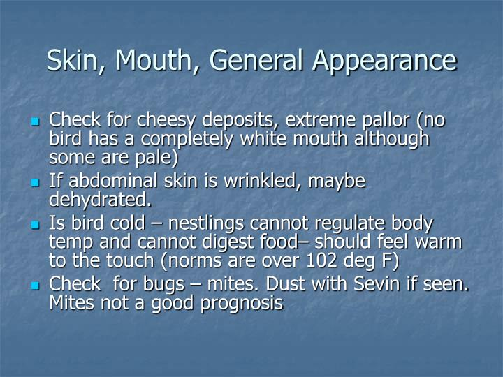Skin, Mouth, General Appearance