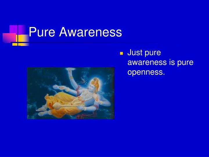 Pure Awareness