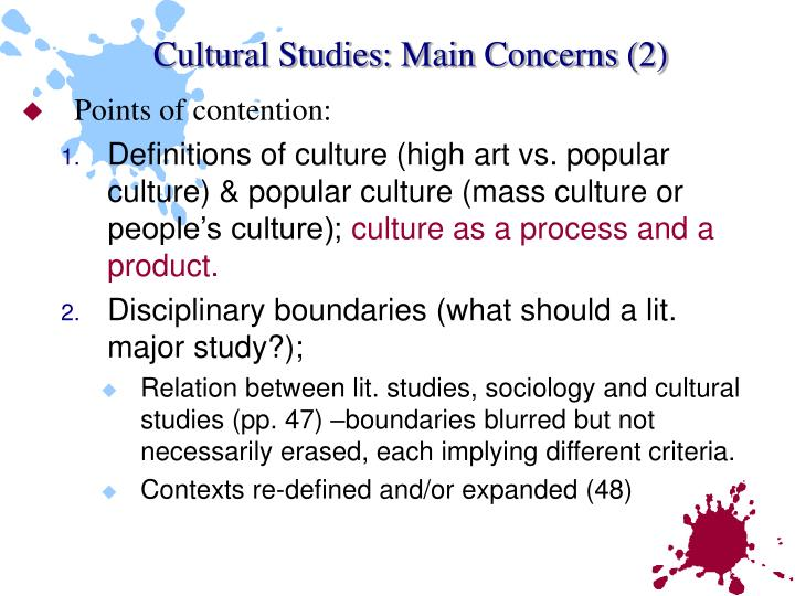 Cultural Studies: Main Concerns (2)
